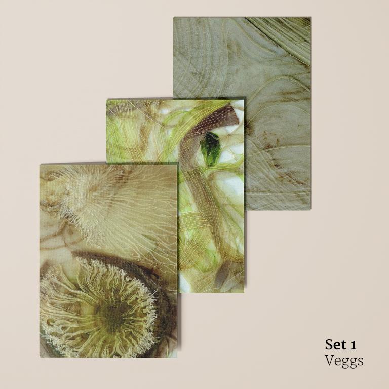 Veggs: ansichtkaarten voorkant (meiraap, bleekselderij en venkel)