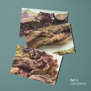 Circularity: ansichtkaarten voorkant (rabarberblad)