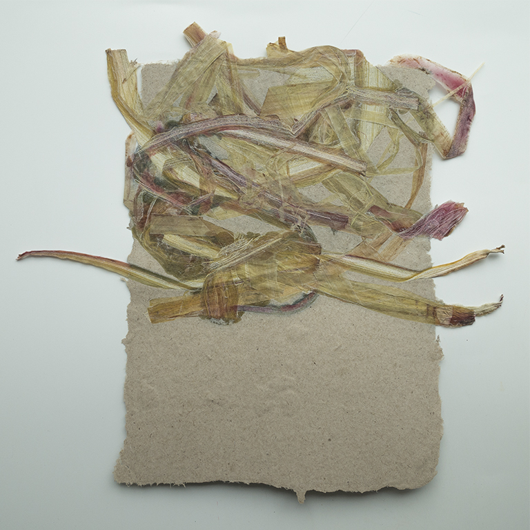 rhubarb and paper #2