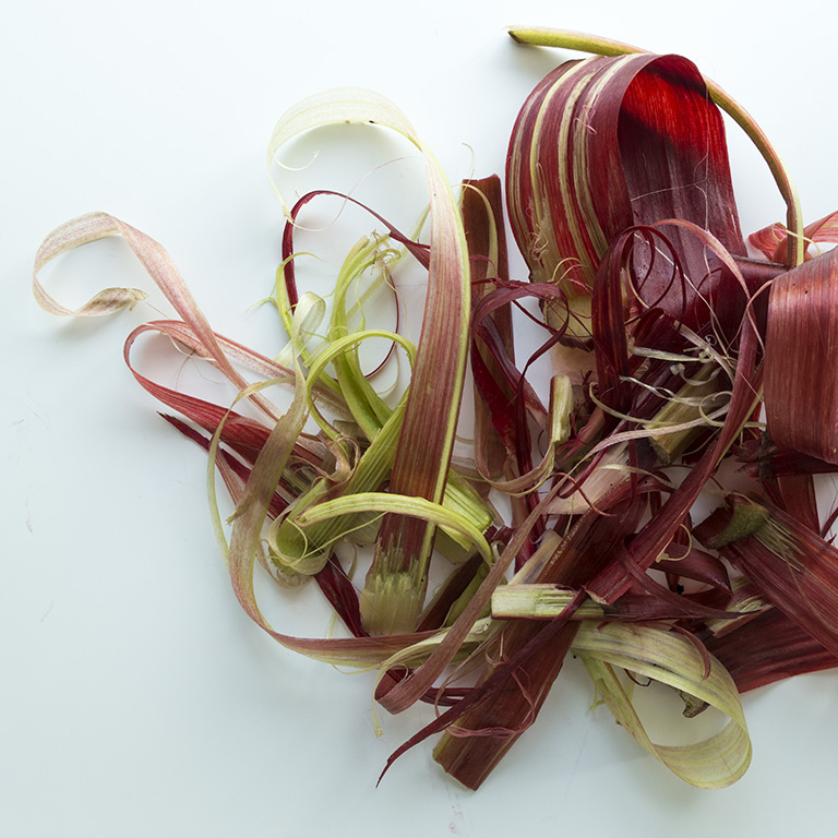 Rhubarb peels