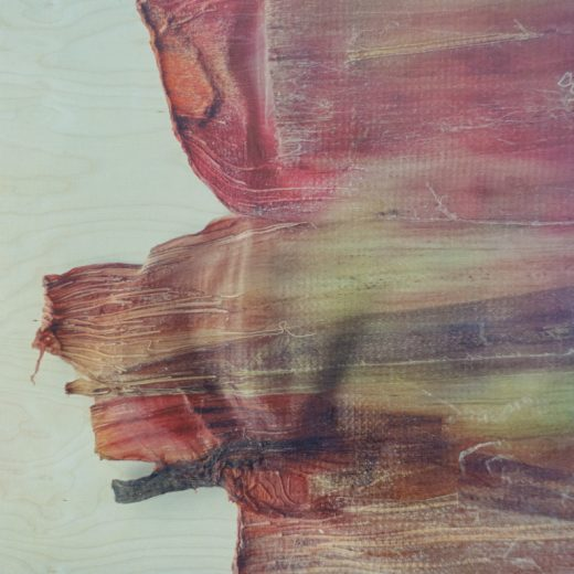 Rhubarb #1, digital print on wood