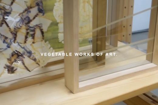 vegetable works of art on video