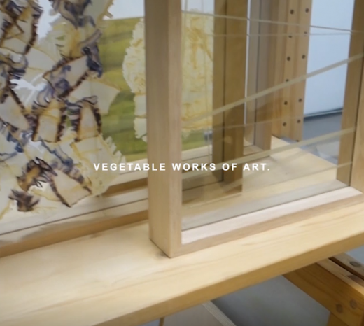 vegetable works of art on video