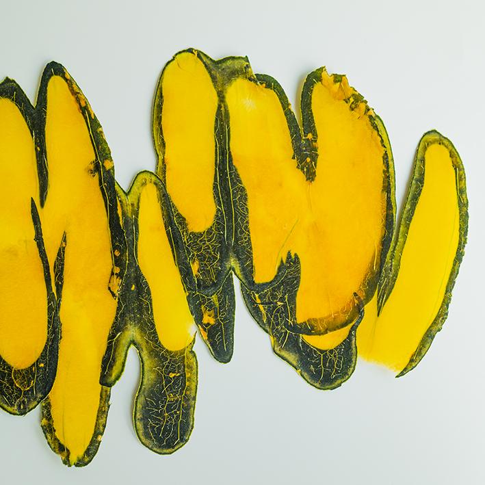 Vegetable graffiti pumpkin serie 1