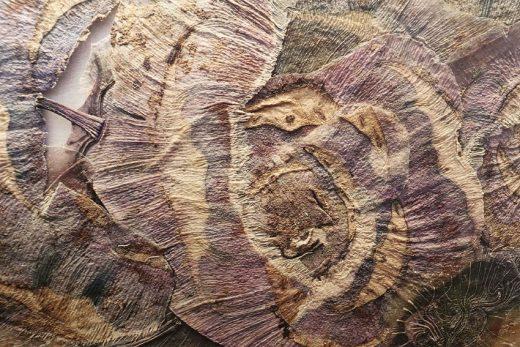 Paarse Koolrabi #1, digital print on wood